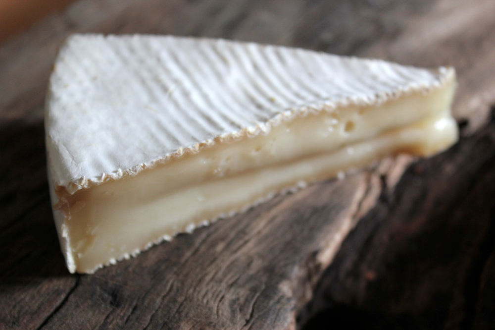 Our raw goat's milk brie style cheese - Calima.