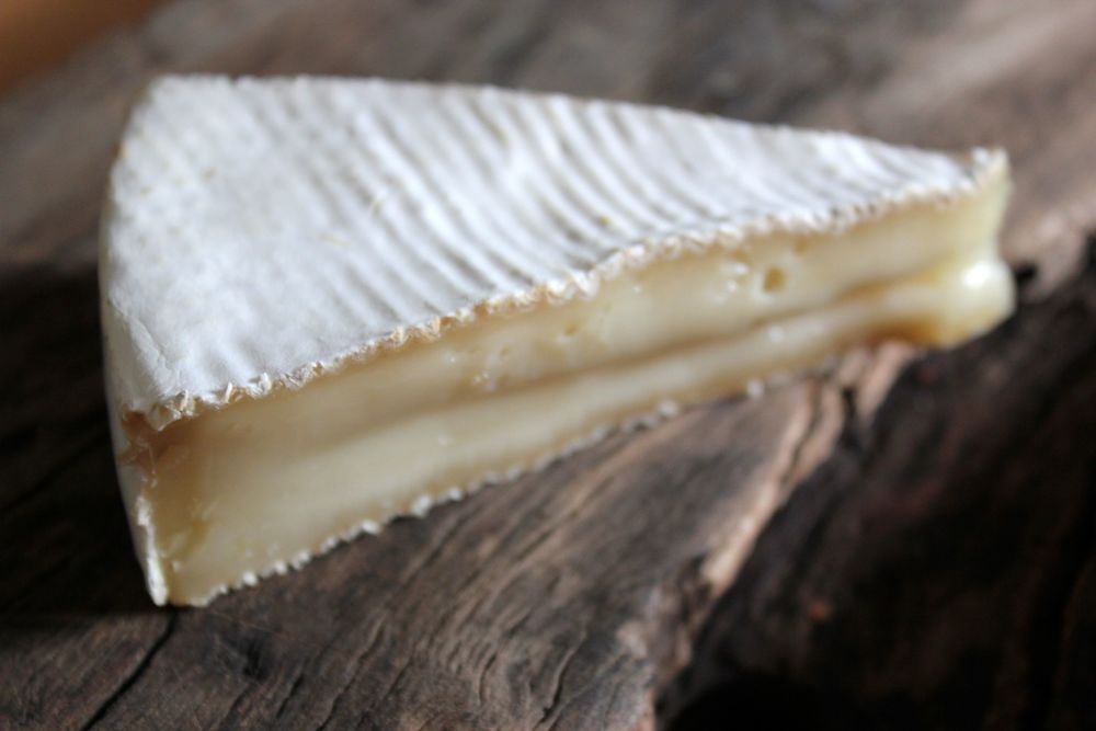 CALIMA - our goat's milk brie style cheese