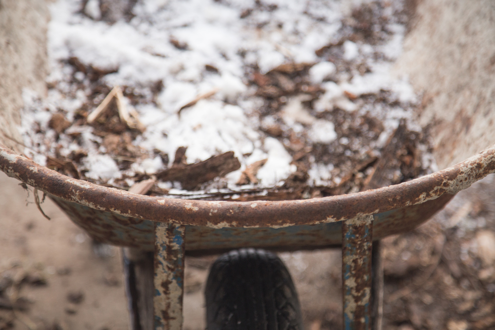 33 // 365 This wheelbarrow/wood is the bane of my heating existence