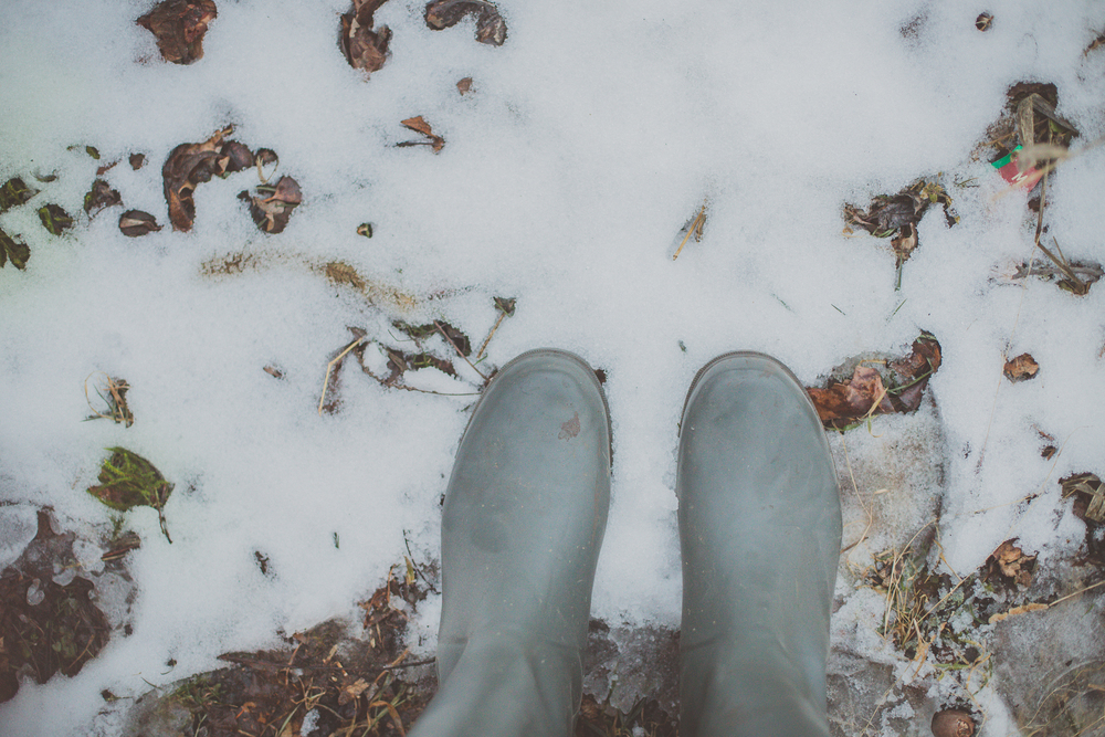 26 // 366 Winter.