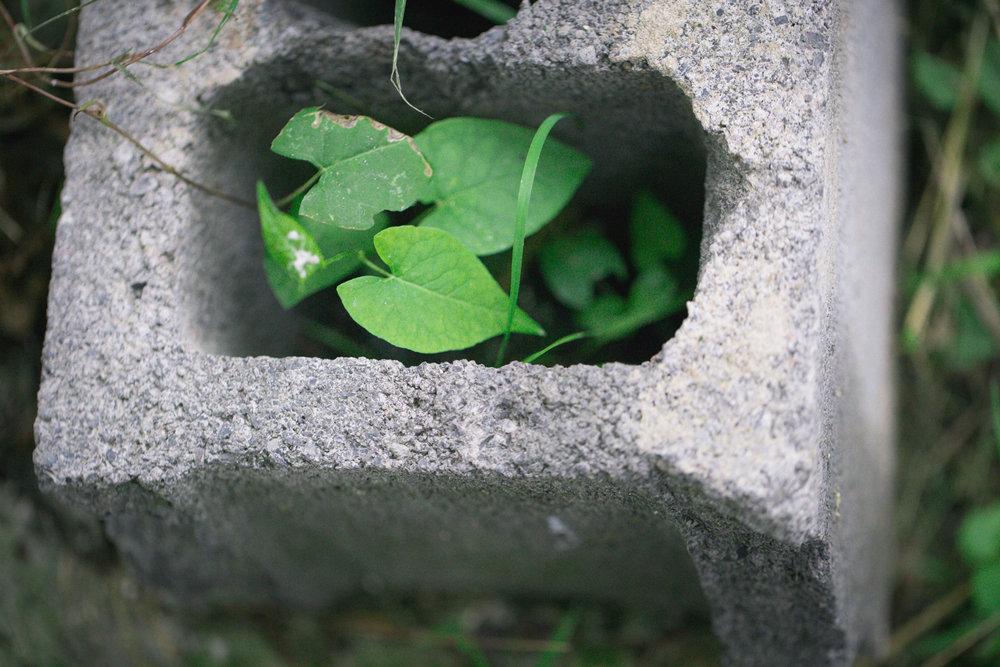 168 // 366 Concrete