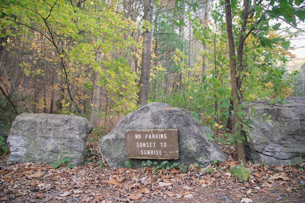 302 // 366 Friday hike :)