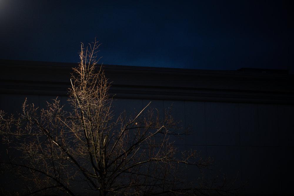 336 // 366 After dark from the Wegman's parking lot