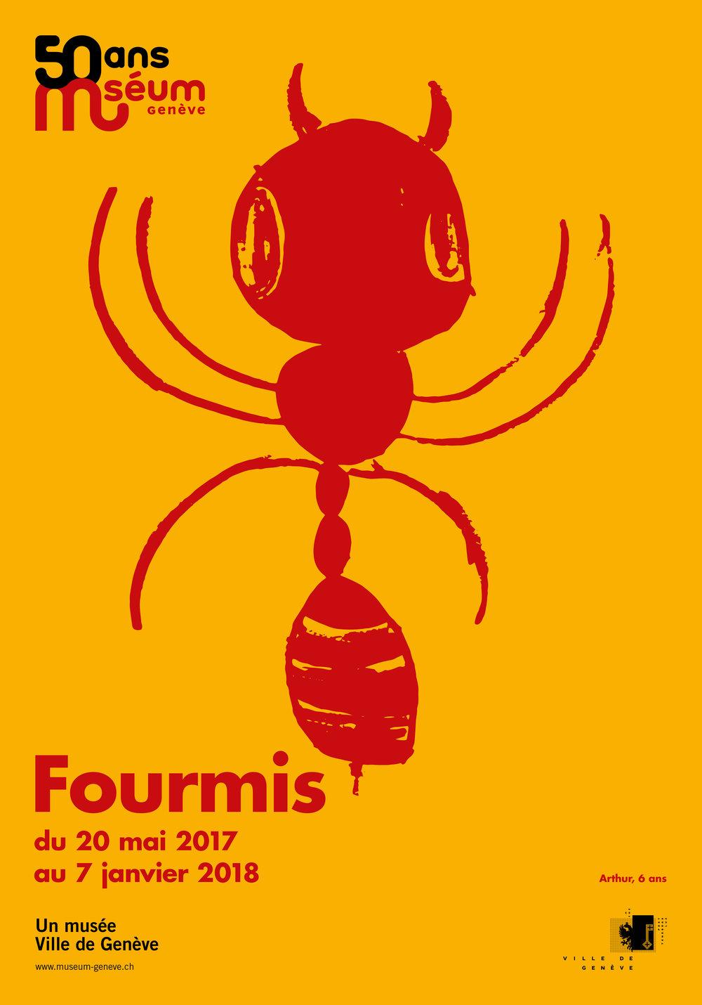 Fourmis1_F4.jpg