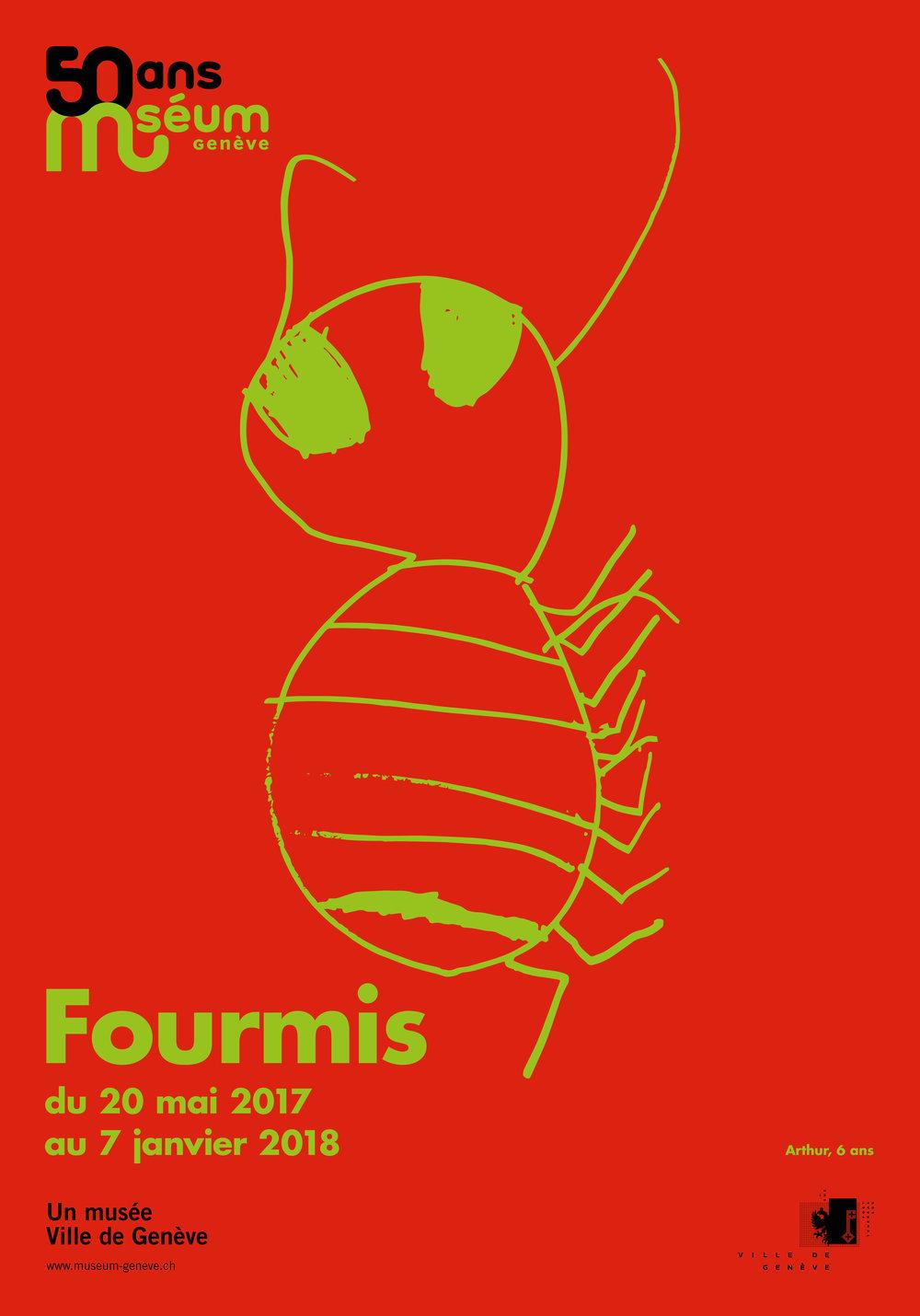 Fourmis5_F4.jpg
