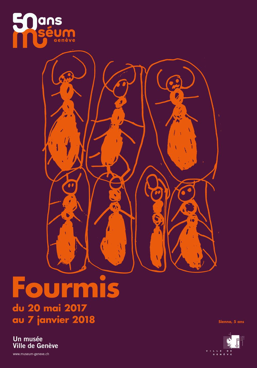 Fourmis4_F4.jpg