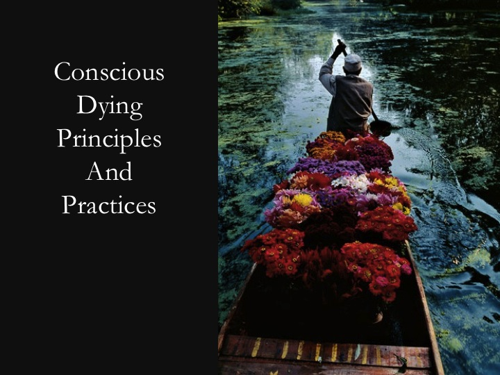 Photo Boatman-conscious dying principles.jpg