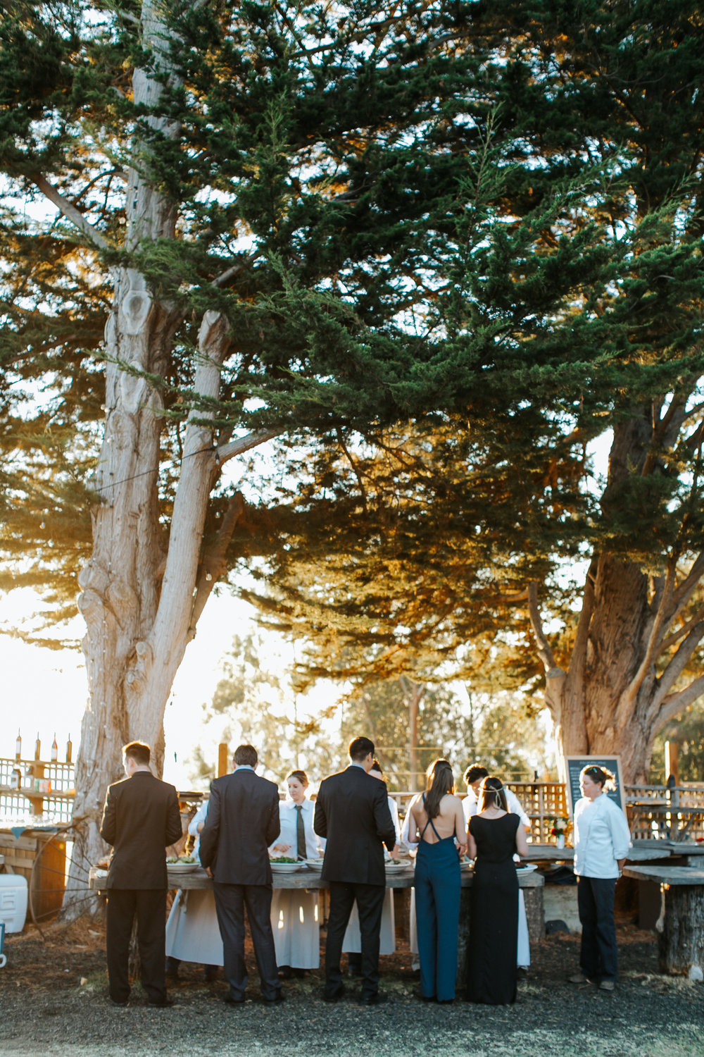 big_sur_wedding_margaret_austin_photography