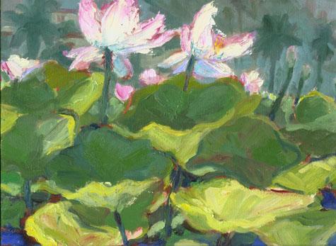 lotus7.jpg