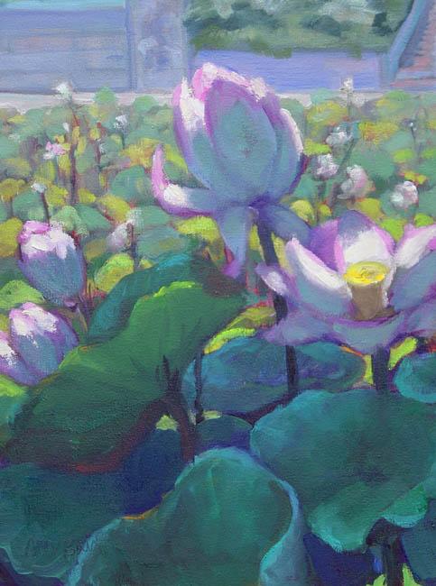 lotus19.jpg