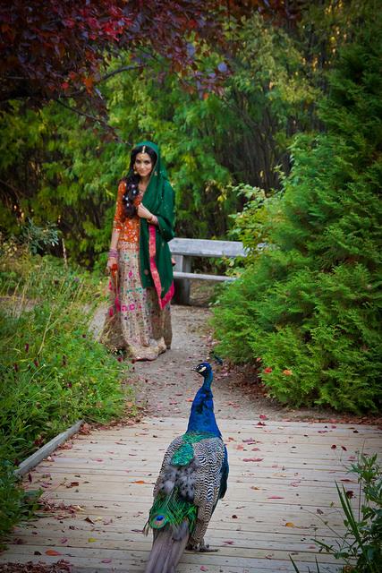 Wedding Photography_JessicaLanePhotography09-16-011.jpg
