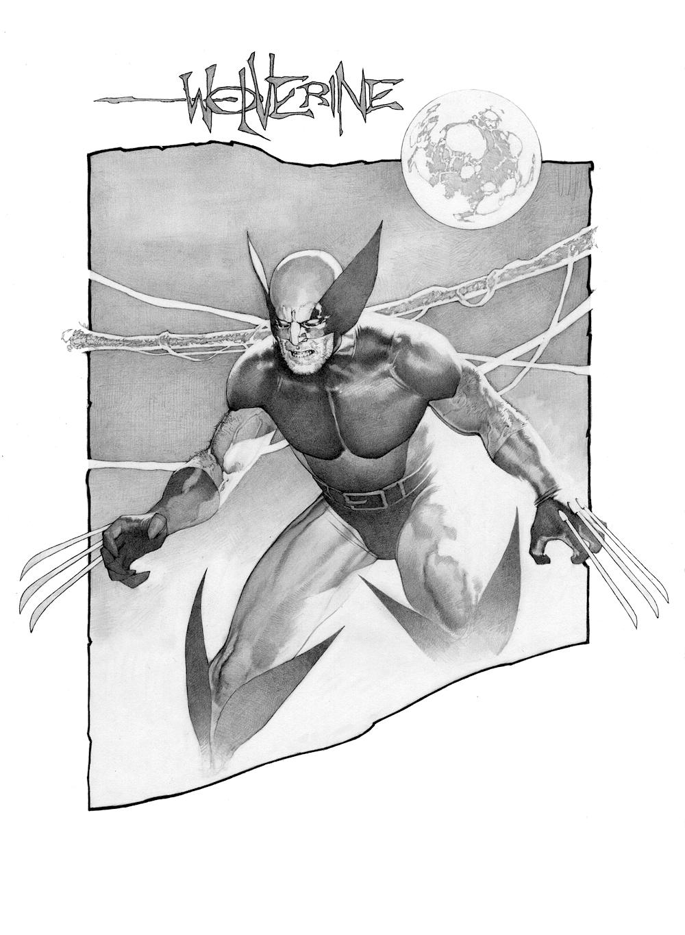 Wolverine1.jpg