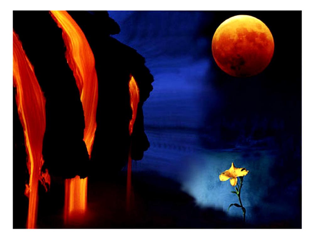 life on a full moon.jpg