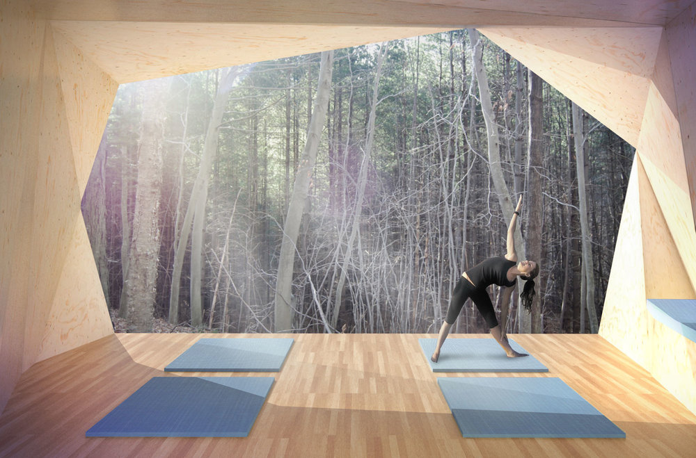 yoga pavilion, wellness retreat   status:  design development                        program:  hospitality square feet: 500 sf                                        location:  woodstock, ny