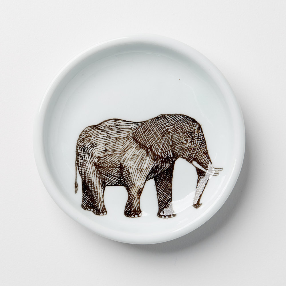 Etched Elephant