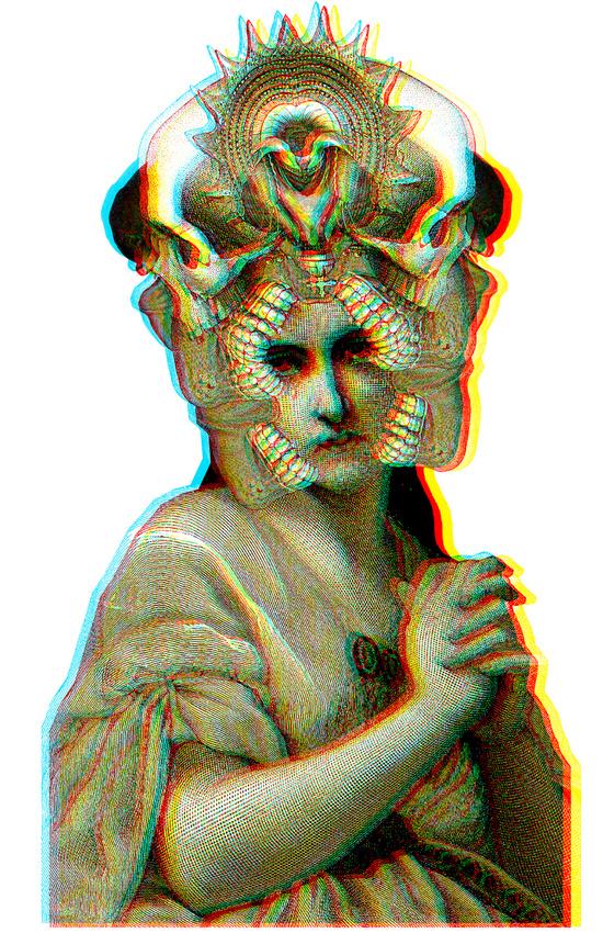 dividus5.jpg