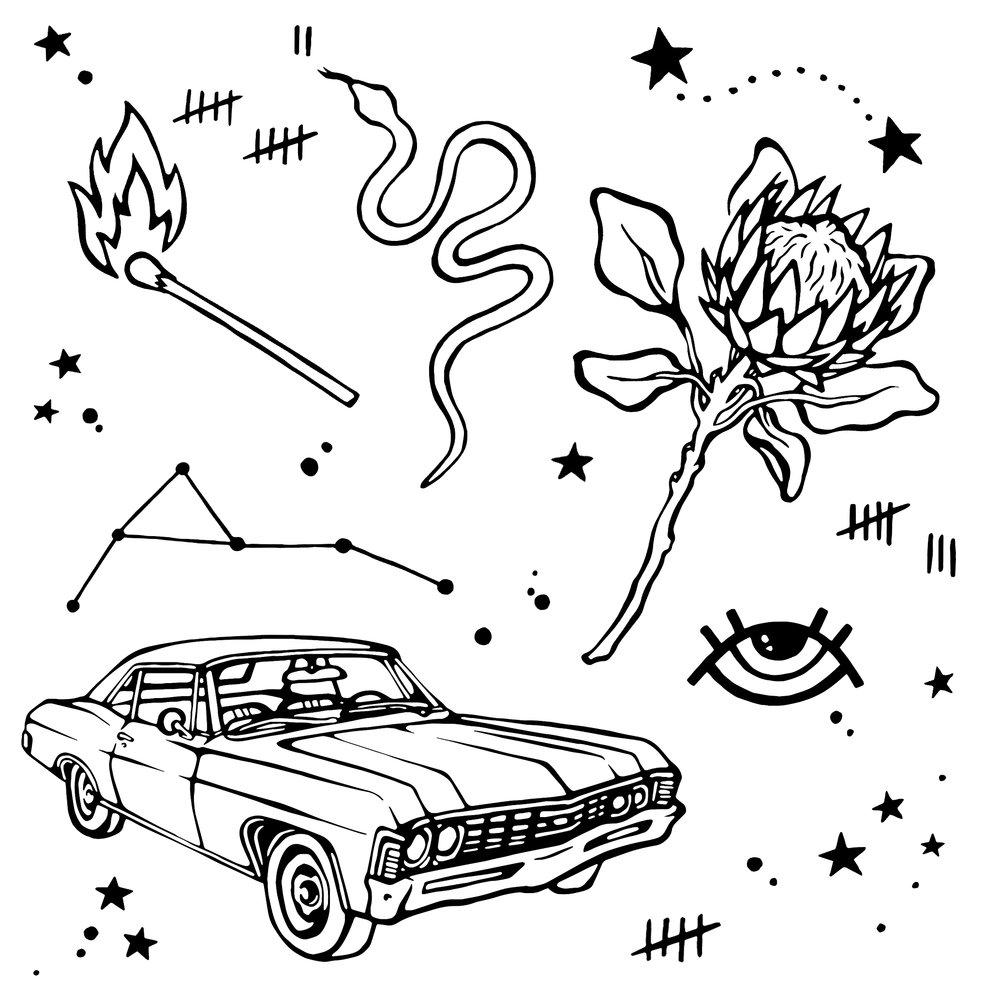 Protea Impala.jpg