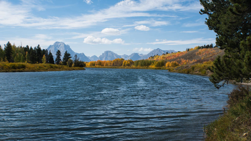 The Snake River, Oxbow Bend.