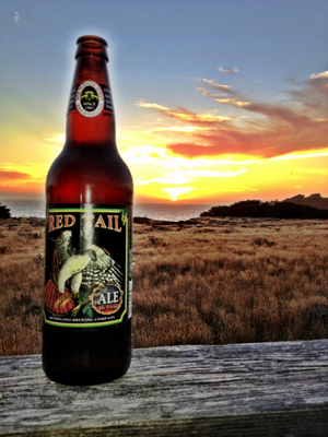 Red-Tail-Sea-Ranch.jpg