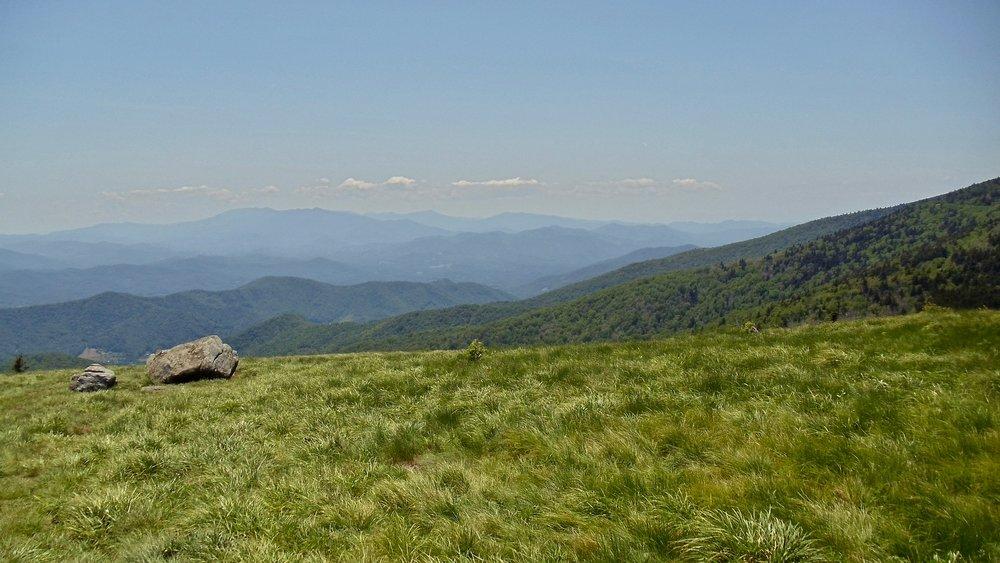 roan mountain june 3 2011.jpeg
