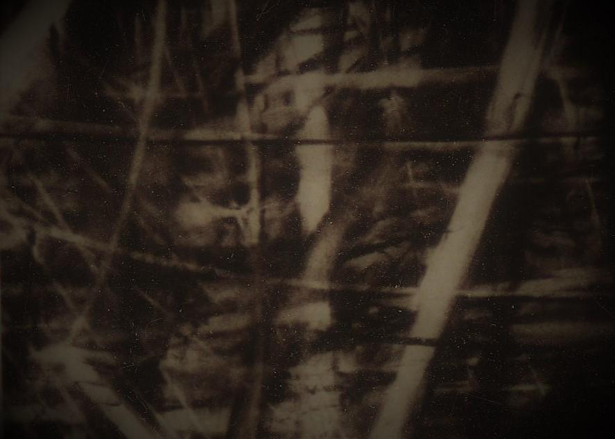 CarlosMiranda-DarkLight-1.jpeg