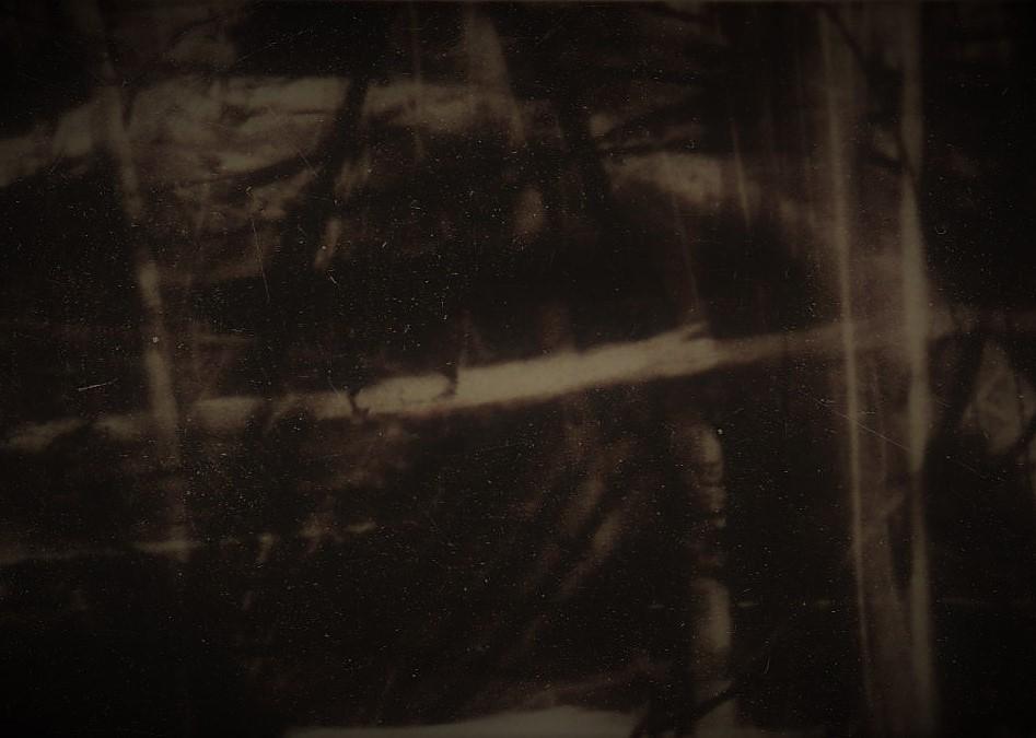 CarlosMiranda-DarkLight-2.jpeg