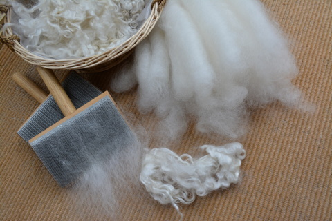 English Leicester can be hand carded into rolags and spun long draw to make a fluffy, soft yarn.  Notice the sheen on the rolags typical of English Leicester.