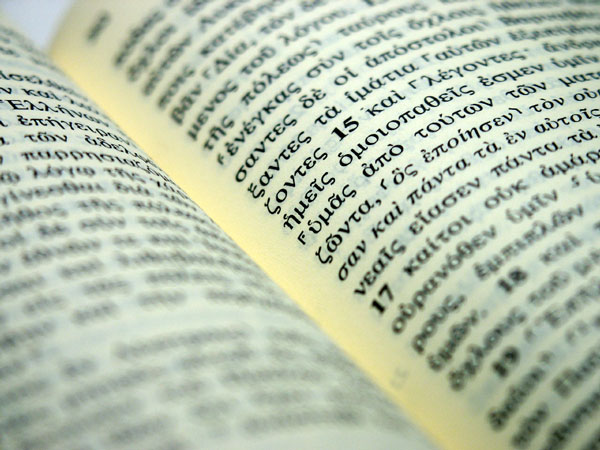 Pastor bishop elder part i advindicate for Terr root meaning