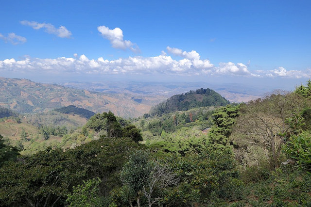The view toward Guatemala City. Finca El Tambor is in the foreground.