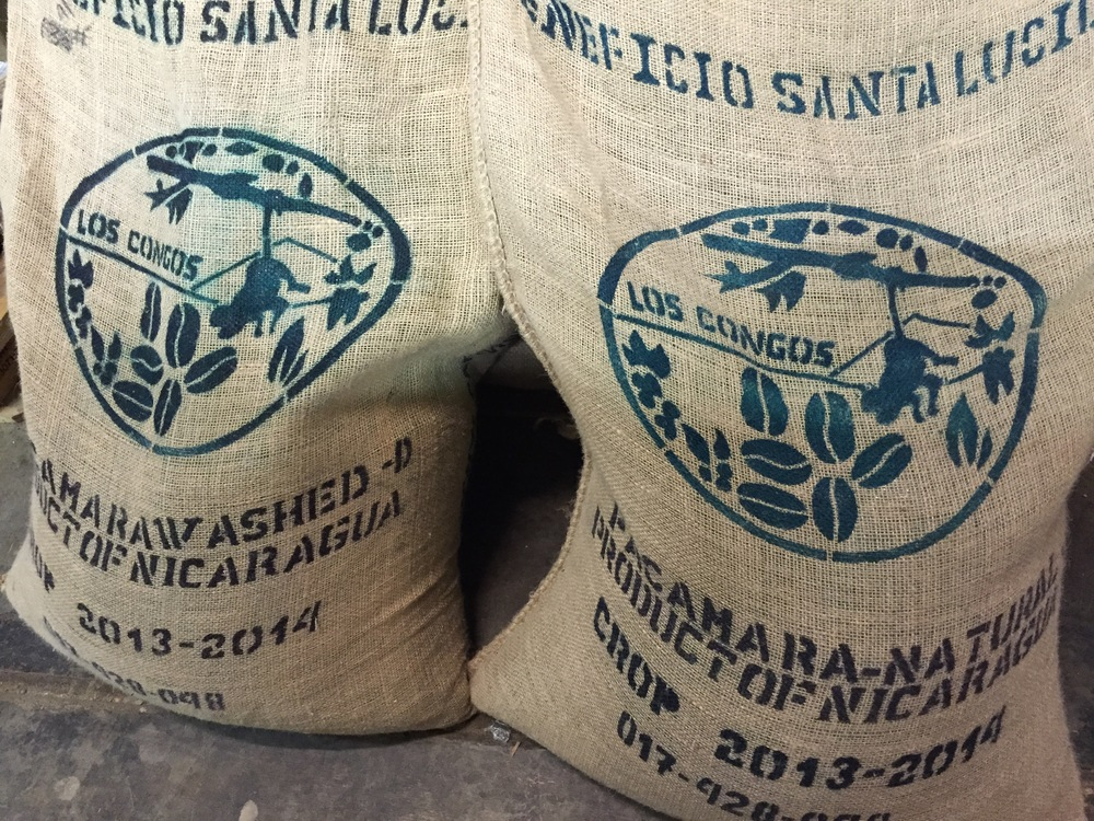 Coffee: Nicaragua Finca Los Congos, the effect of processing on Flavor
