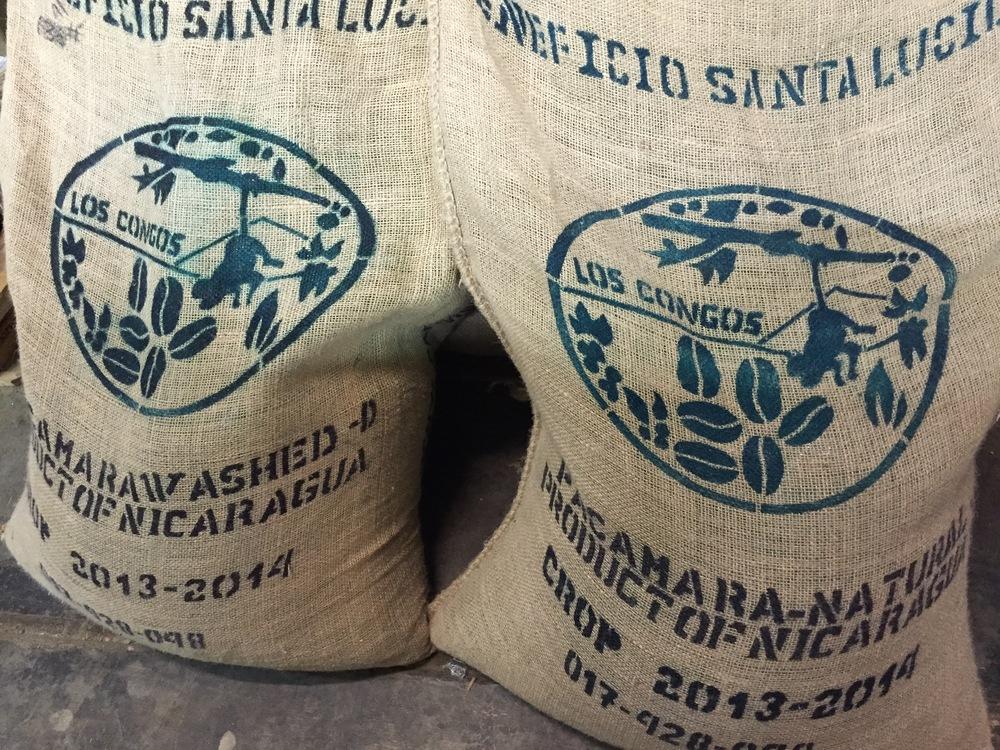 Coffee: Nicaragua Finca Los Congos, the effect of processing on Flavor