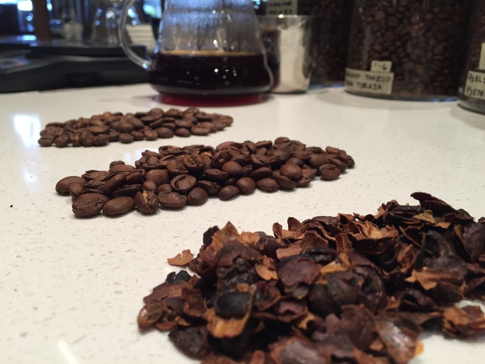 Nicaragua Finca Los Congos Pacamara.  From left to right: washed process, natural process, and cascara.
