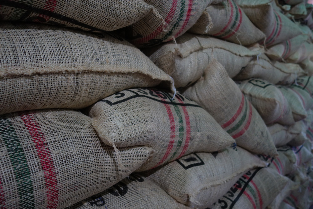 Traditional Colombian coffee bags at Banexport's dry mill inPitalito, Huila Department, Colombia