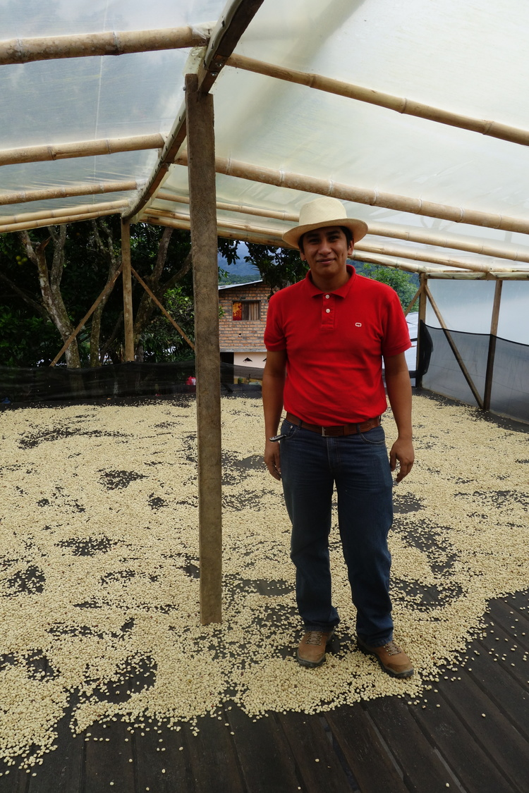 Rodrigo standing in his parabolic dryer.  These covered drying beds are typically built on top of structures where wet milling occurs, or barns.