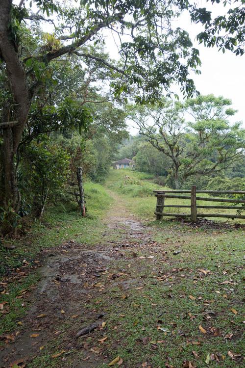 walking through the property of Patio Bonito