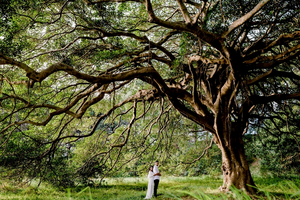 storiesbyjen sydney wedding photographer hochzeitsfotograf nrw_0188.jpg