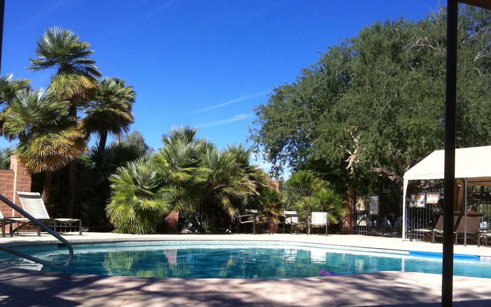 Am Swimmingpool kann man entspannen und sich abkühlen.