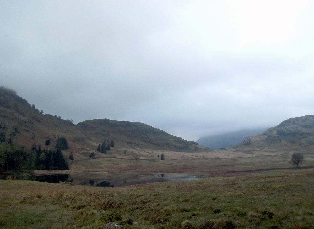 Another one of Lola's - the tarn from up the hill near the National Trust Car Park