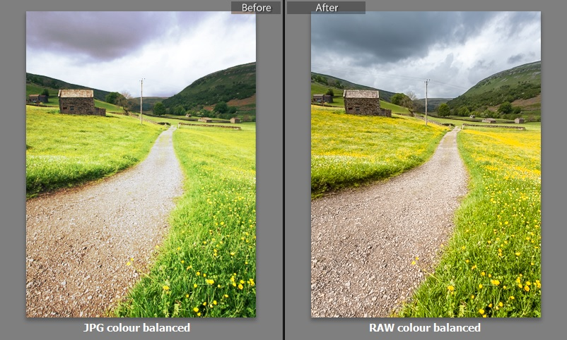 The difference between JPG colour balanced and RAW colour balanced images.