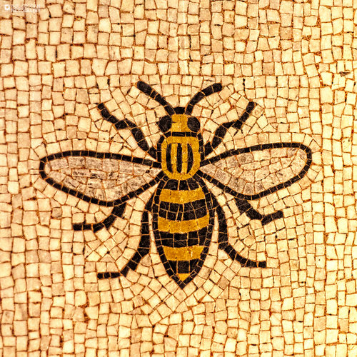 custom canvas manchester worker bee print