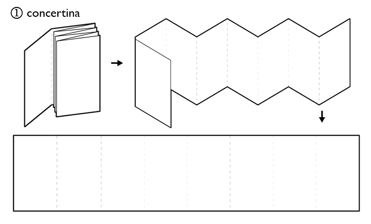 concertina diagram.jpg