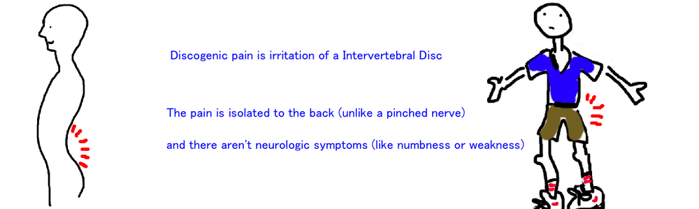 discogenic back pain lumbar spine intervertebral disk