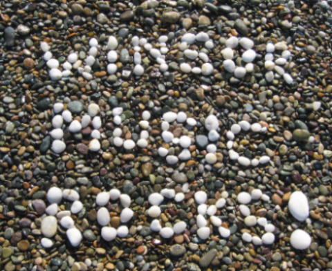 Winsor Music Rocks.JPG