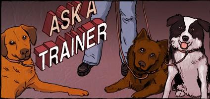 Dogster_askATrainer.jpg
