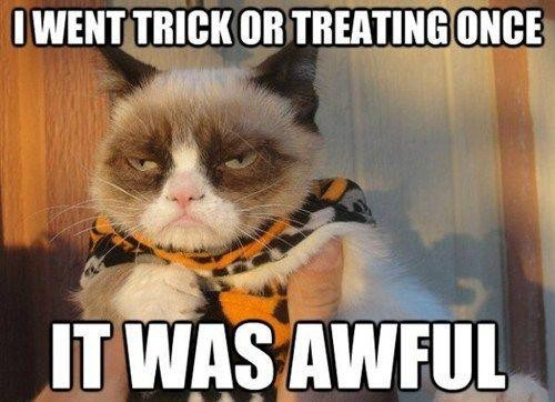 While Grumpy Cat's spirit is entertaining...some pets don't mind being dressed up for Halloween and aren't bothered by parties or noisy kids in costumes.  Please respect your pet's reactions to these things and read the article for lots of great suggestions for Halloween time.