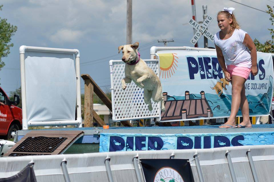 Register your pup for Pier Pups dock diving!
