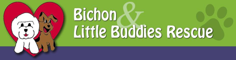 Bichon-&-Little-Buddies-log.png