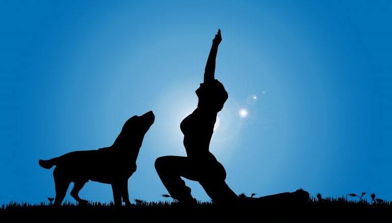 yogainthebark.jpg