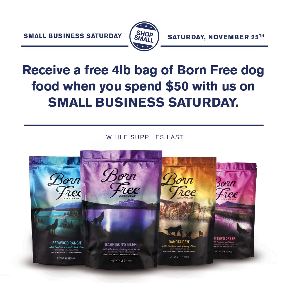 small business saturday-2017jpg.jpg
