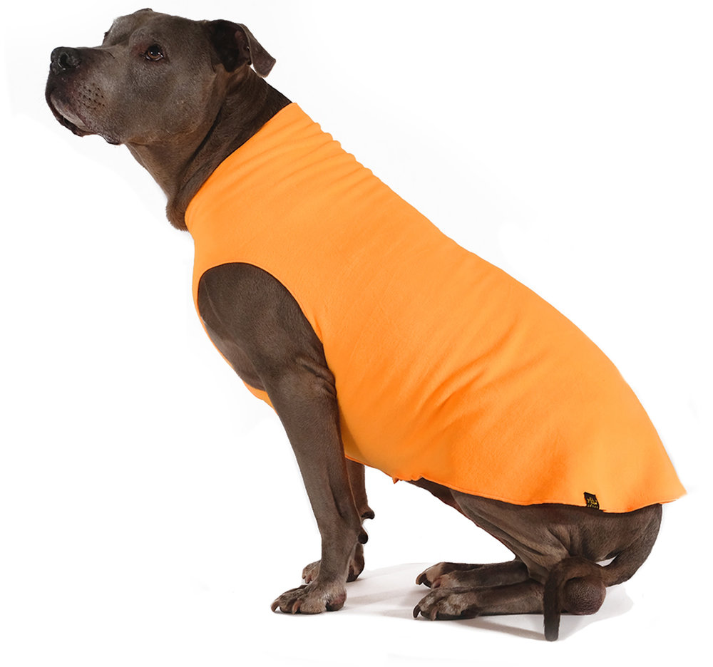 Gold Paw Stretch Fleece in Blaze Orange